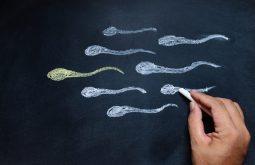Tinh trùng không đảm bảo về số lượng, chất lượng là biểu hiện của tinh trùng yếu