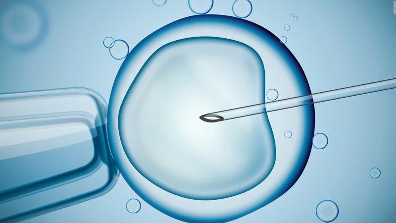 Phương pháp y học hỗ trợ mang thai