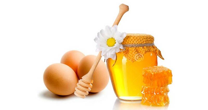Lòng đỏ trứng gà kết hợp với mật giúp tăng hiệu quả trị xuất tinh sớm
