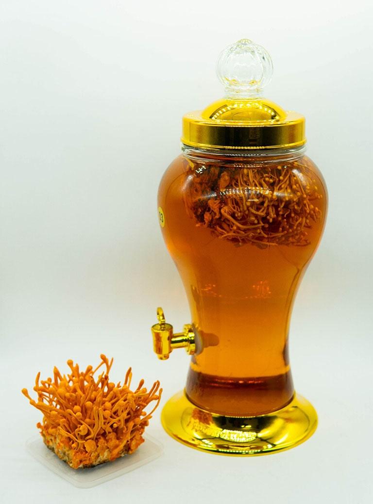 Thuốc nam ngâm rượu trị xuất tinh sớm từ đông trùng hạ thảo